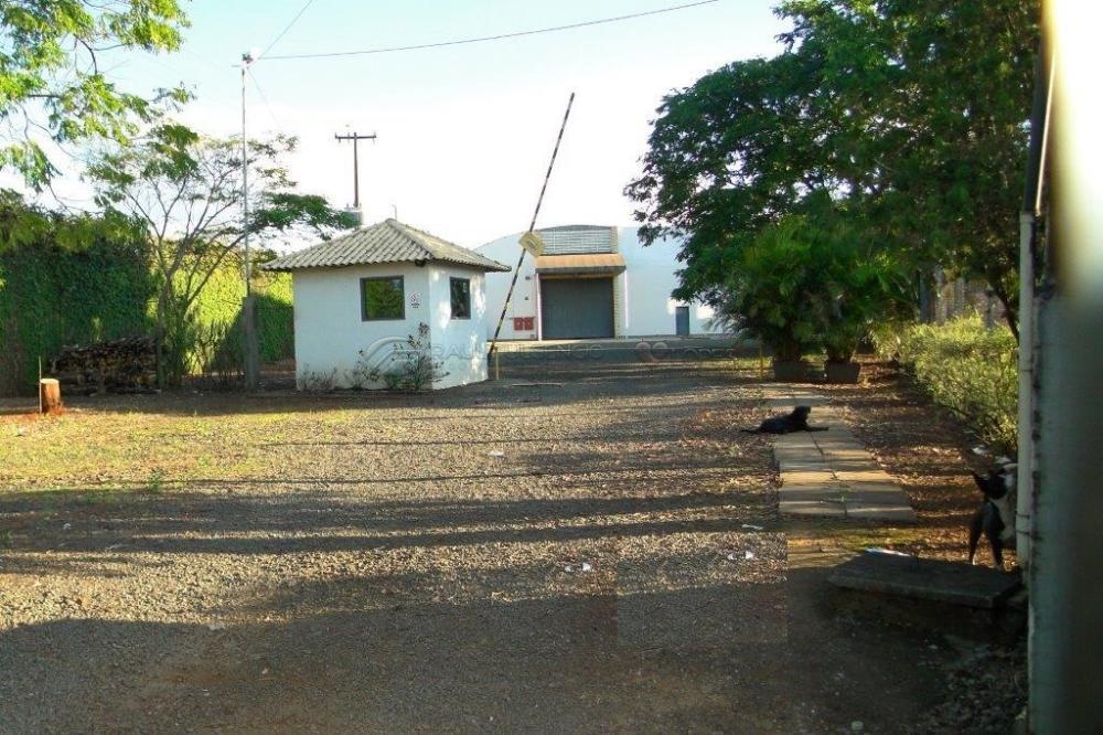 Alugar Comercial / Barracão em Londrina apenas R$ 17.500,00 - Foto 4