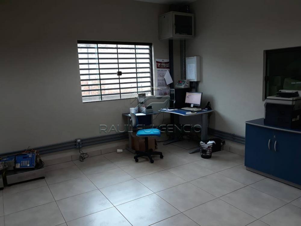 Alugar Terreno / Comercial em Londrina apenas R$ 4.890,00 - Foto 5