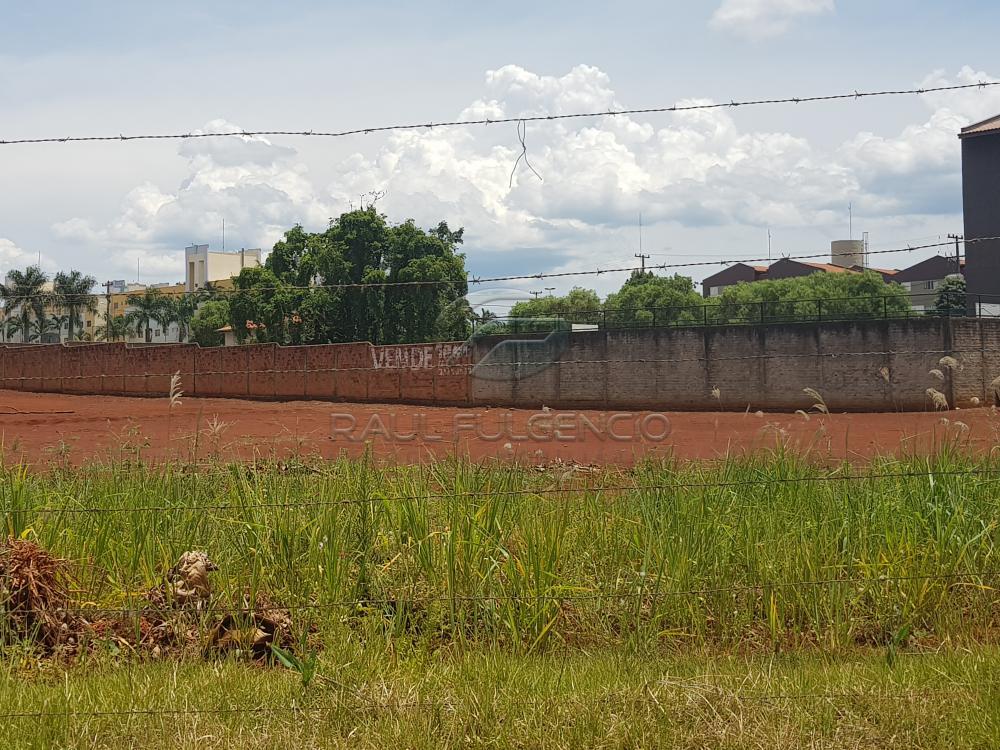 Comprar Terreno / Comercial em Londrina apenas R$ 3.500.000,00 - Foto 10