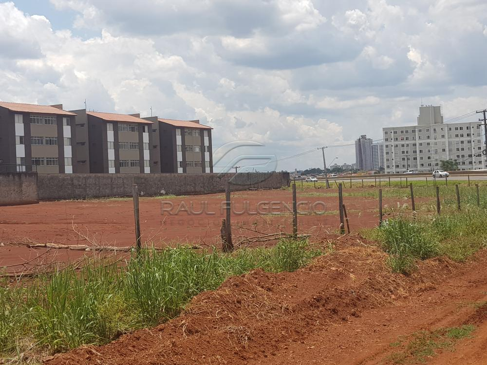 Comprar Terreno / Comercial em Londrina apenas R$ 3.500.000,00 - Foto 2