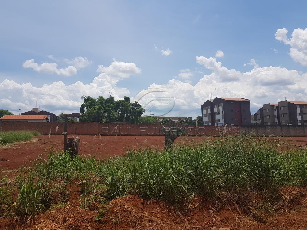 Comprar Terreno / Comercial em Londrina apenas R$ 3.500.000,00 - Foto 5