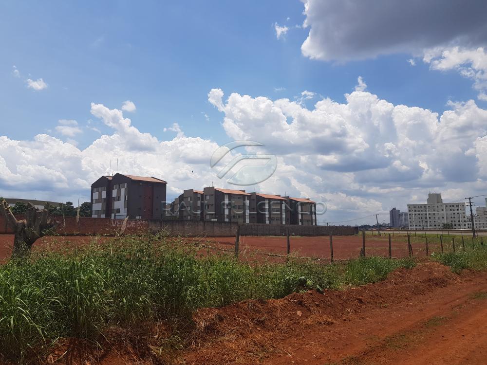 Comprar Terreno / Comercial em Londrina apenas R$ 3.500.000,00 - Foto 6
