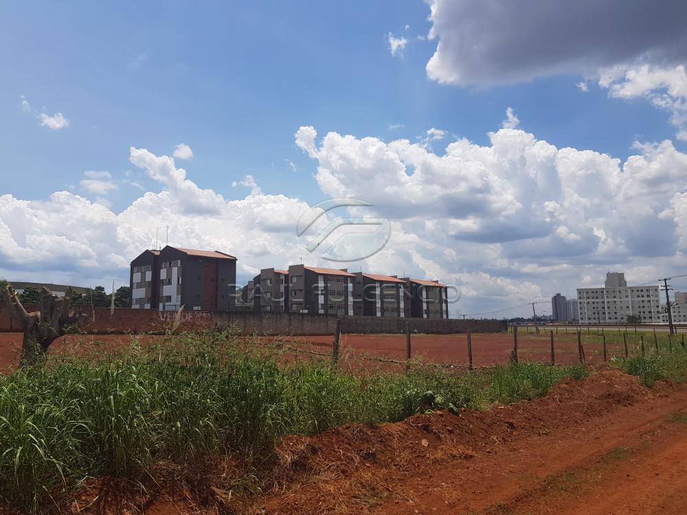 Comprar Terreno / Comercial em Londrina apenas R$ 3.500.000,00 - Foto 7