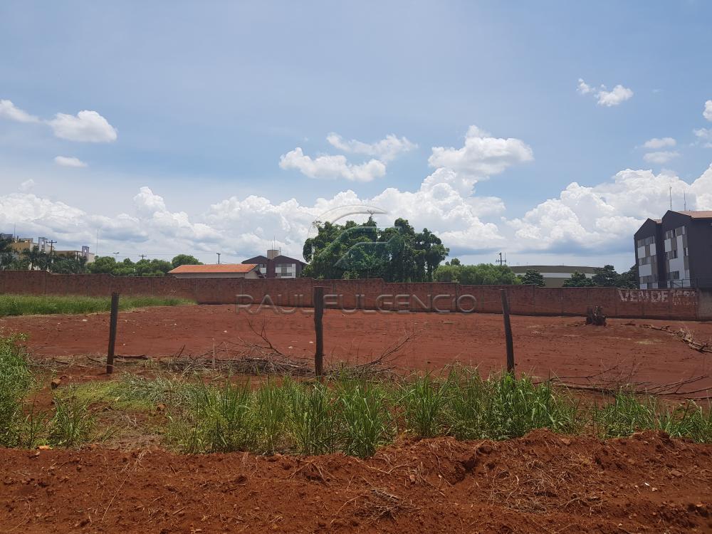 Comprar Terreno / Comercial em Londrina apenas R$ 3.500.000,00 - Foto 8