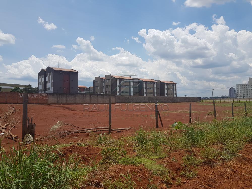 Comprar Terreno / Comercial em Londrina apenas R$ 3.500.000,00 - Foto 9