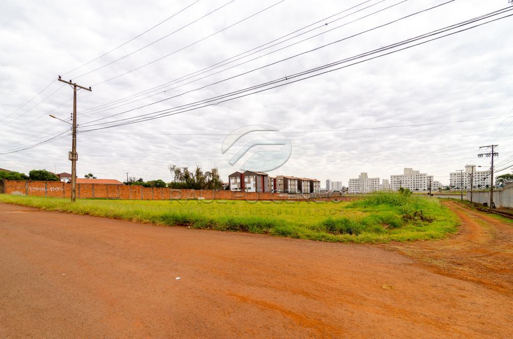 Comprar Terreno / Comercial em Londrina apenas R$ 3.500.000,00 - Foto 11