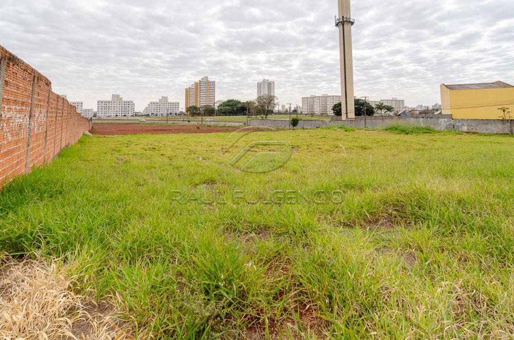 Comprar Terreno / Comercial em Londrina apenas R$ 3.500.000,00 - Foto 12