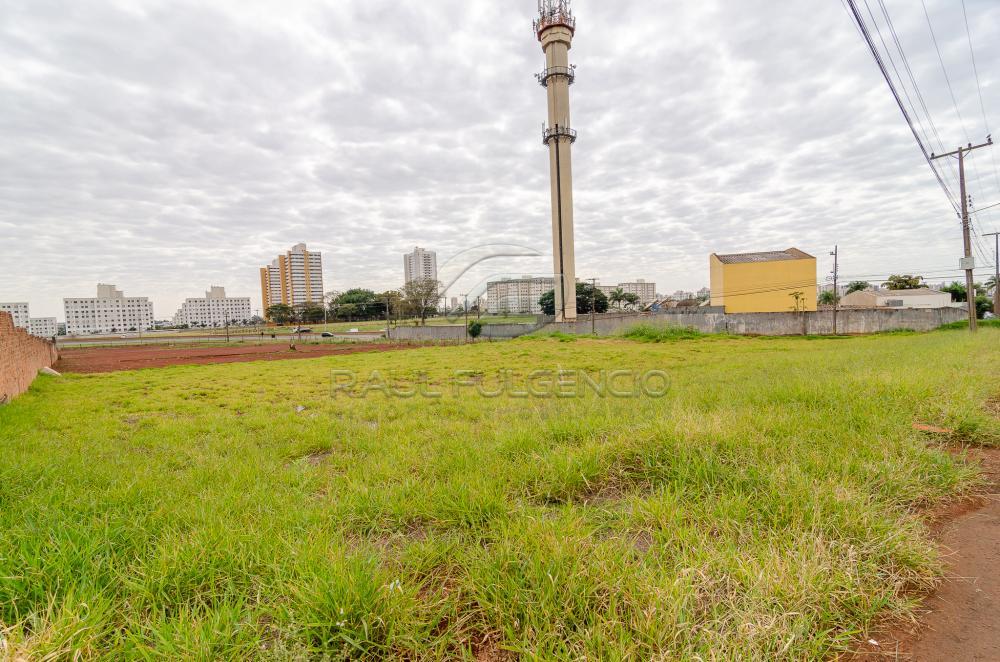 Comprar Terreno / Comercial em Londrina apenas R$ 3.500.000,00 - Foto 13