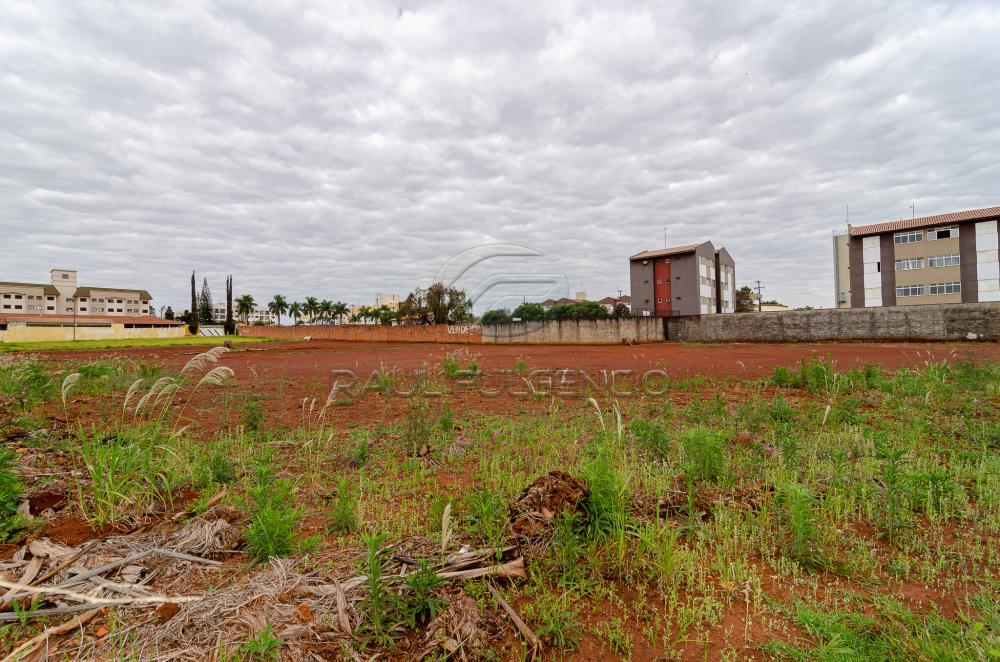 Comprar Terreno / Comercial em Londrina apenas R$ 3.500.000,00 - Foto 16