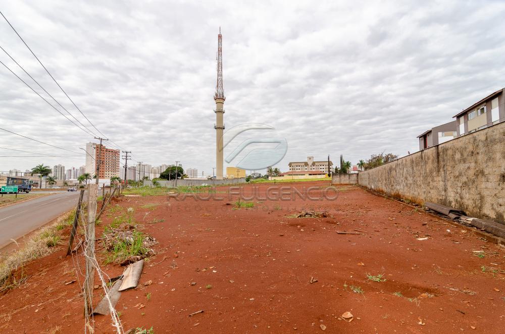 Comprar Terreno / Comercial em Londrina apenas R$ 3.500.000,00 - Foto 19