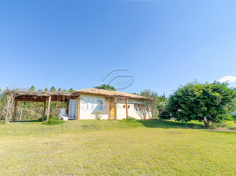 Comprar Casa / Condomínio em Londrina apenas R$ 1.490.000,00 - Foto 29