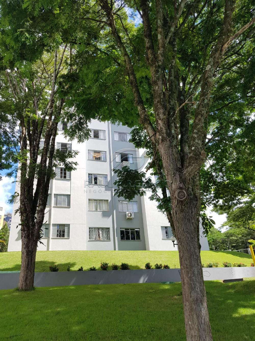 Comprar Apartamento / Padrão em Londrina apenas R$ 285.000,00 - Foto 19