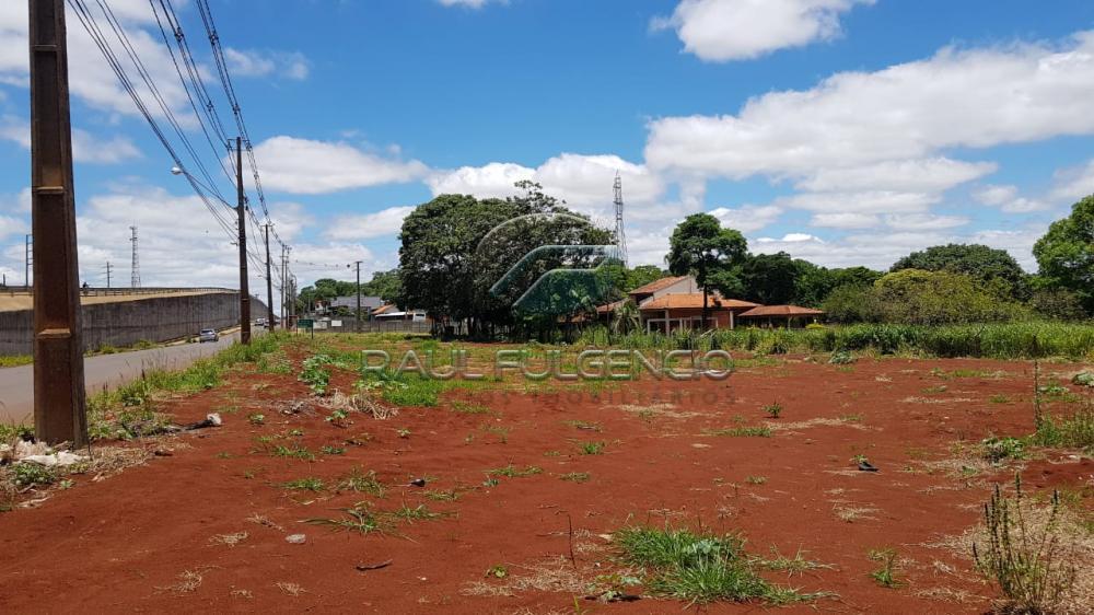 Comprar Terreno / Comercial em Londrina apenas R$ 2.600.000,00 - Foto 2