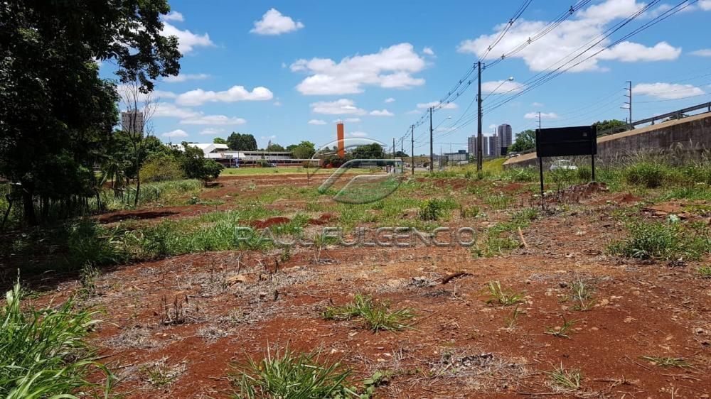 Comprar Terreno / Comercial em Londrina apenas R$ 2.600.000,00 - Foto 3