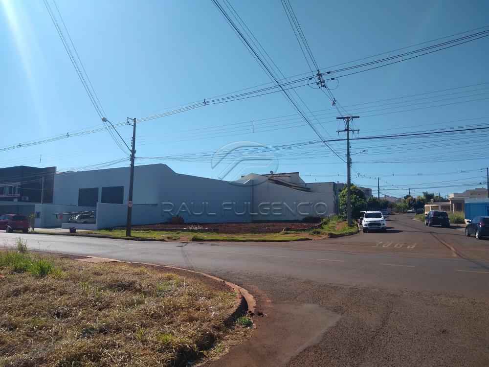 Alugar Terreno / Comercial em Londrina apenas R$ 2.500,00 - Foto 2