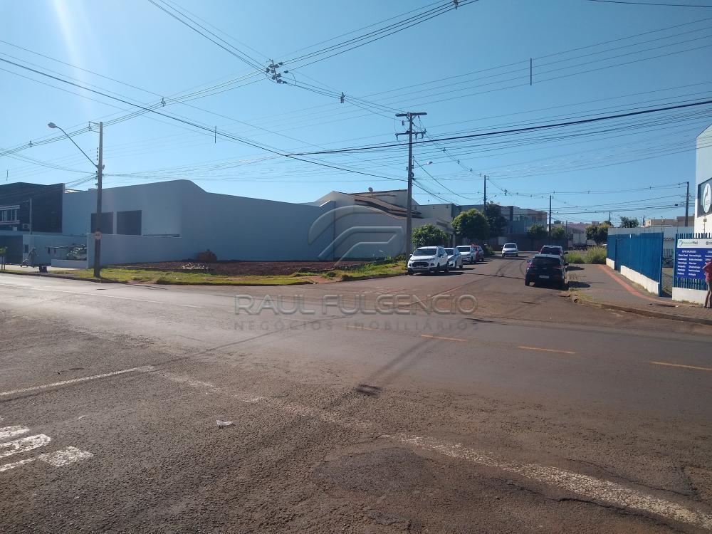 Alugar Terreno / Comercial em Londrina apenas R$ 2.500,00 - Foto 3