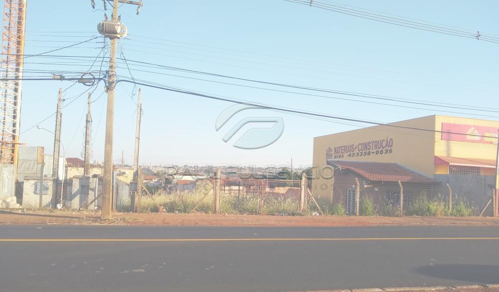 Alugar Terreno / Comercial em Londrina apenas R$ 1.000,00 - Foto 3