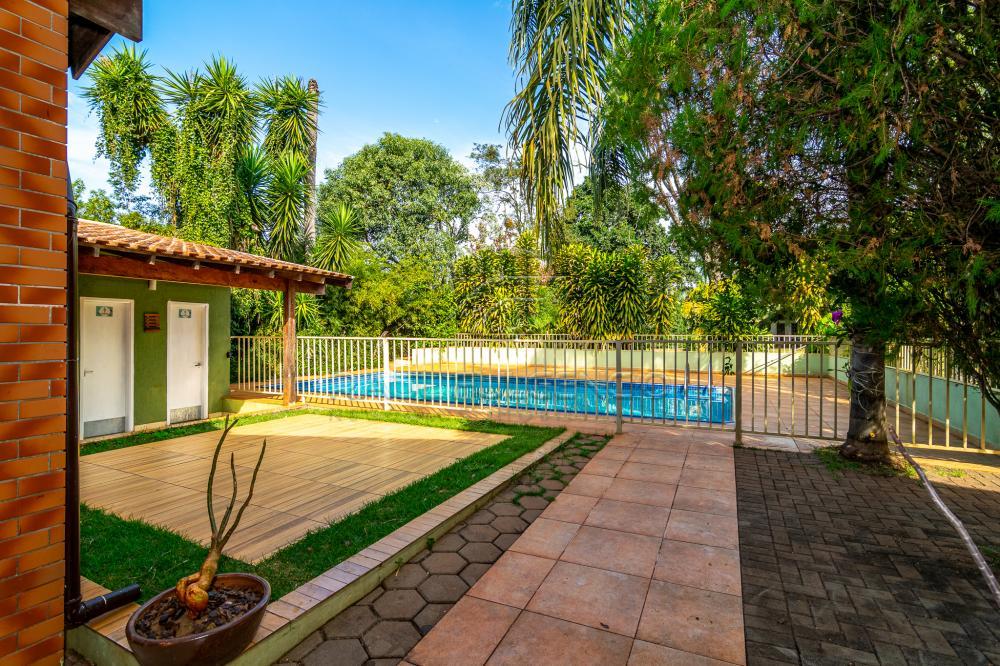 Alugar Rural / Chácara em Londrina apenas R$ 5.000,00 - Foto 7