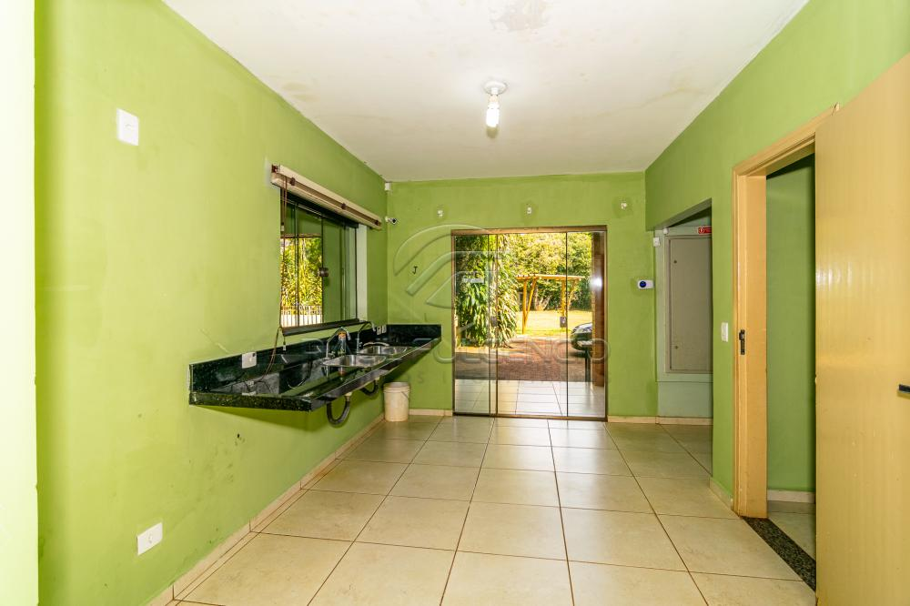 Alugar Rural / Chácara em Londrina apenas R$ 5.000,00 - Foto 16