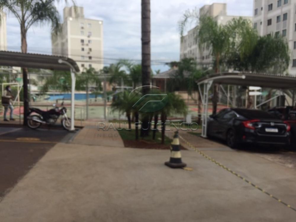 Alugar Apartamento / Padrão em Londrina apenas R$ 930,00 - Foto 2