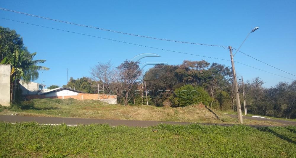 Comprar Terreno / Comercial em Londrina apenas R$ 400.000,00 - Foto 2