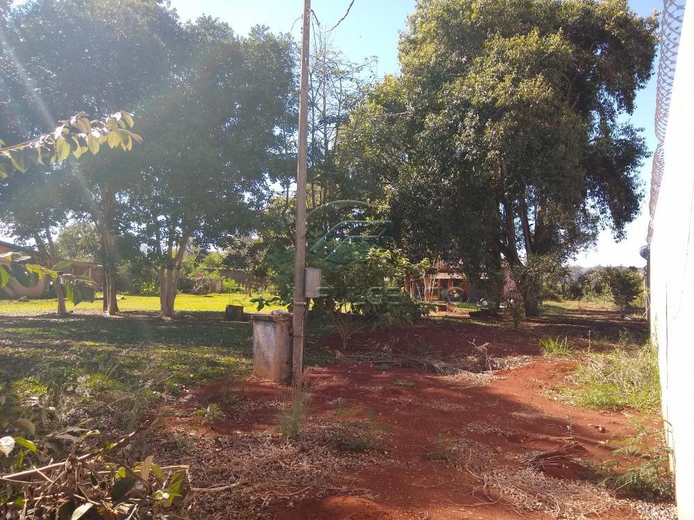 Comprar Terreno / Área em Londrina apenas R$ 1.200.000,00 - Foto 2