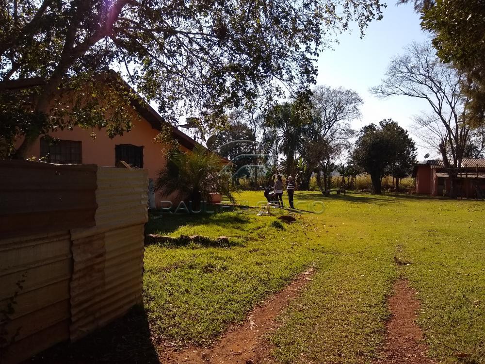 Comprar Terreno / Área em Londrina apenas R$ 1.200.000,00 - Foto 6