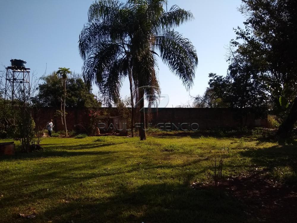 Comprar Terreno / Área em Londrina apenas R$ 1.200.000,00 - Foto 1