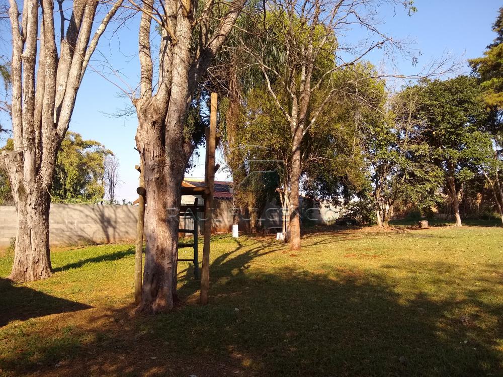 Comprar Terreno / Área em Londrina apenas R$ 1.200.000,00 - Foto 9