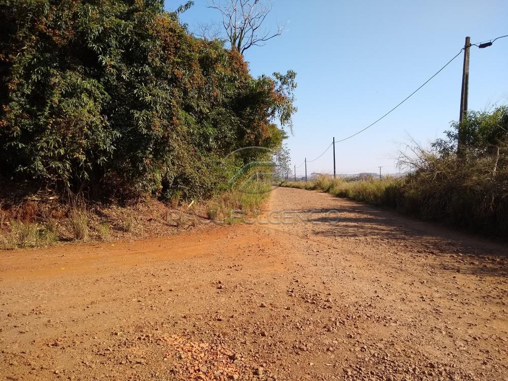Comprar Rural / Chácara em Londrina apenas R$ 2.000.000,00 - Foto 9