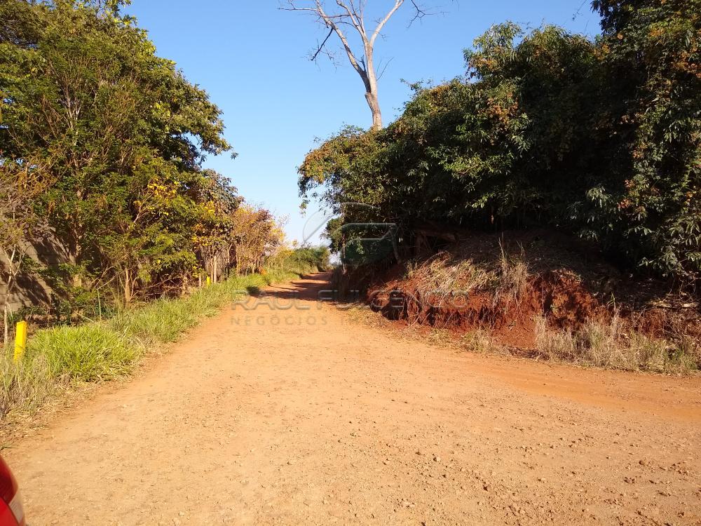 Comprar Rural / Chácara em Londrina apenas R$ 2.000.000,00 - Foto 8