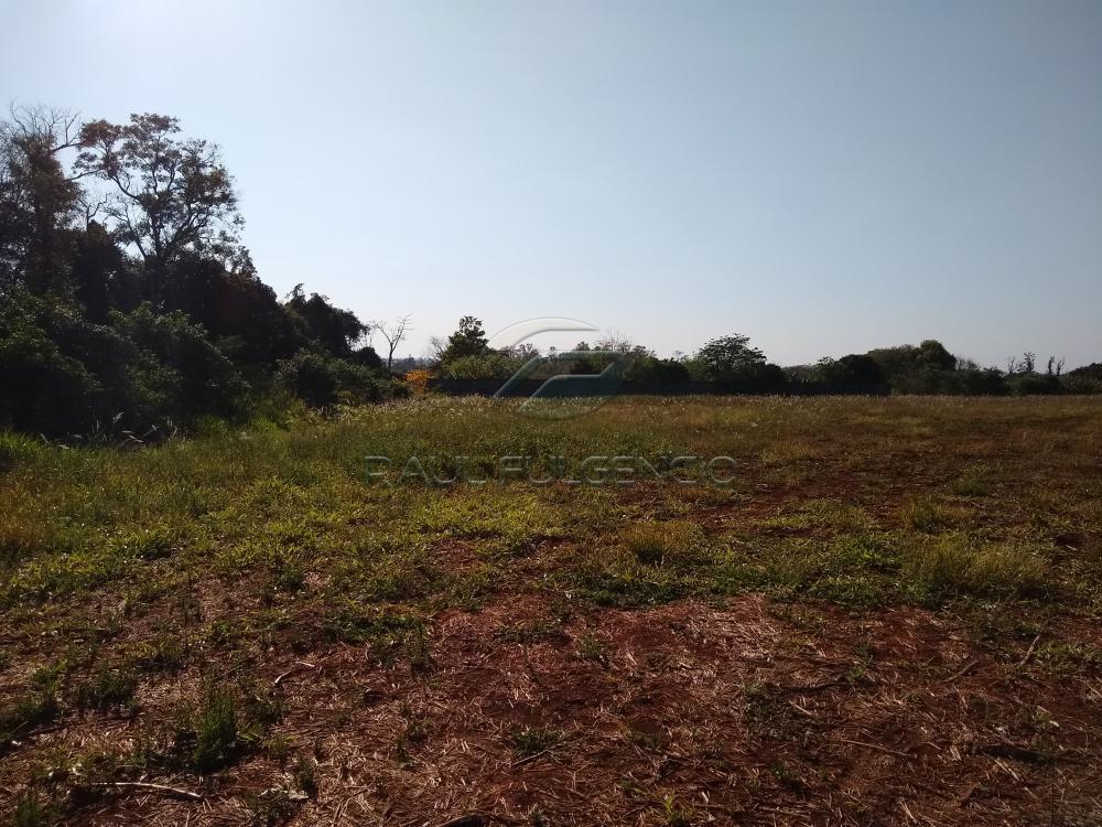 Comprar Rural / Chácara em Londrina apenas R$ 2.000.000,00 - Foto 5