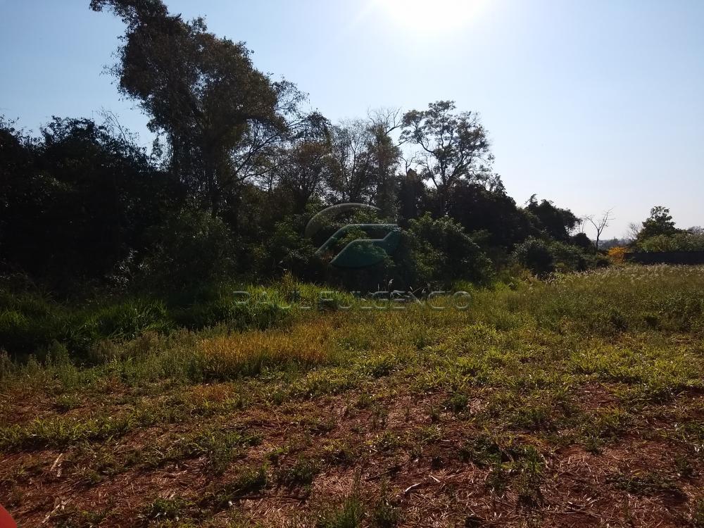 Comprar Rural / Chácara em Londrina apenas R$ 2.000.000,00 - Foto 6