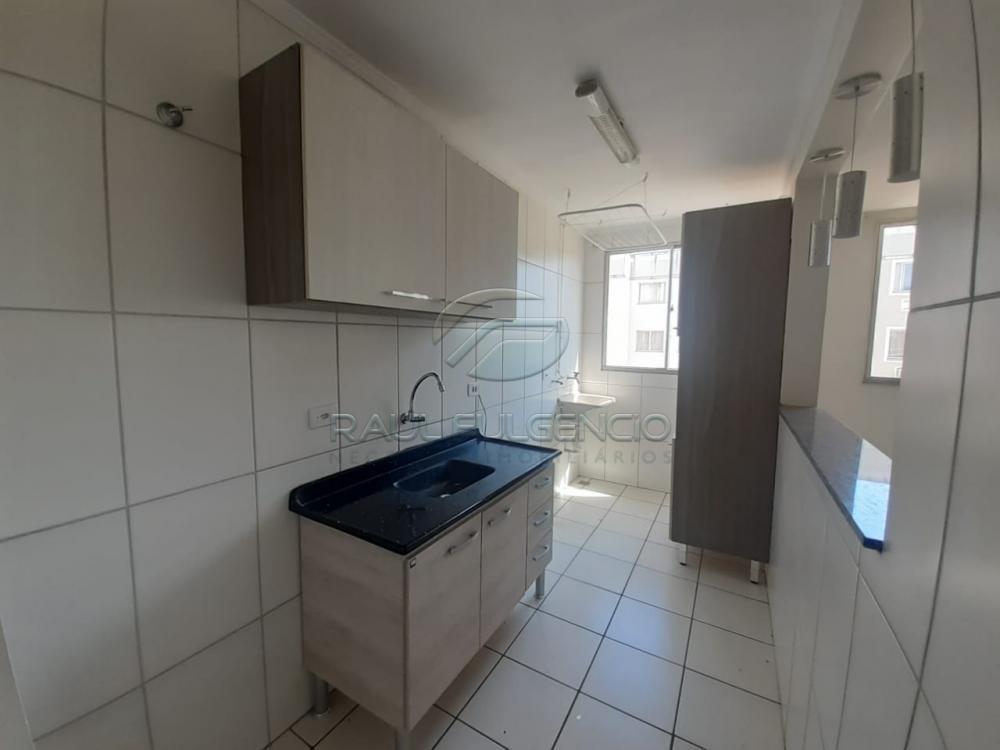 Alugar Apartamento / Padrão em Londrina apenas R$ 650,00 - Foto 2
