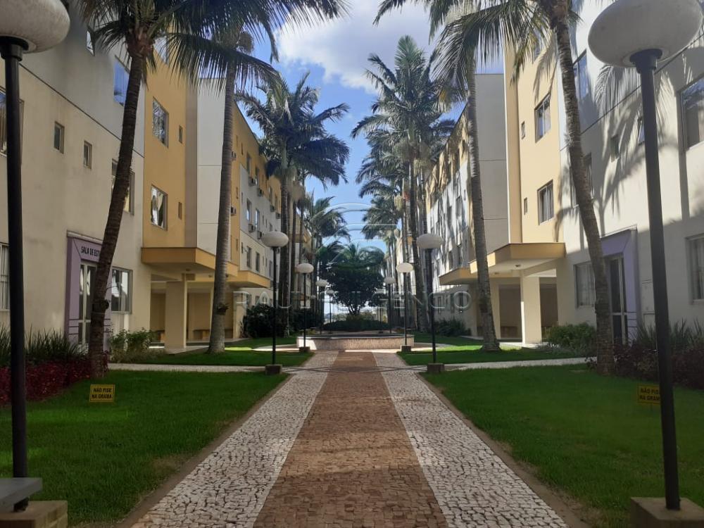 Alugar Apartamento / Flat em Londrina R$ 550,00 - Foto 2