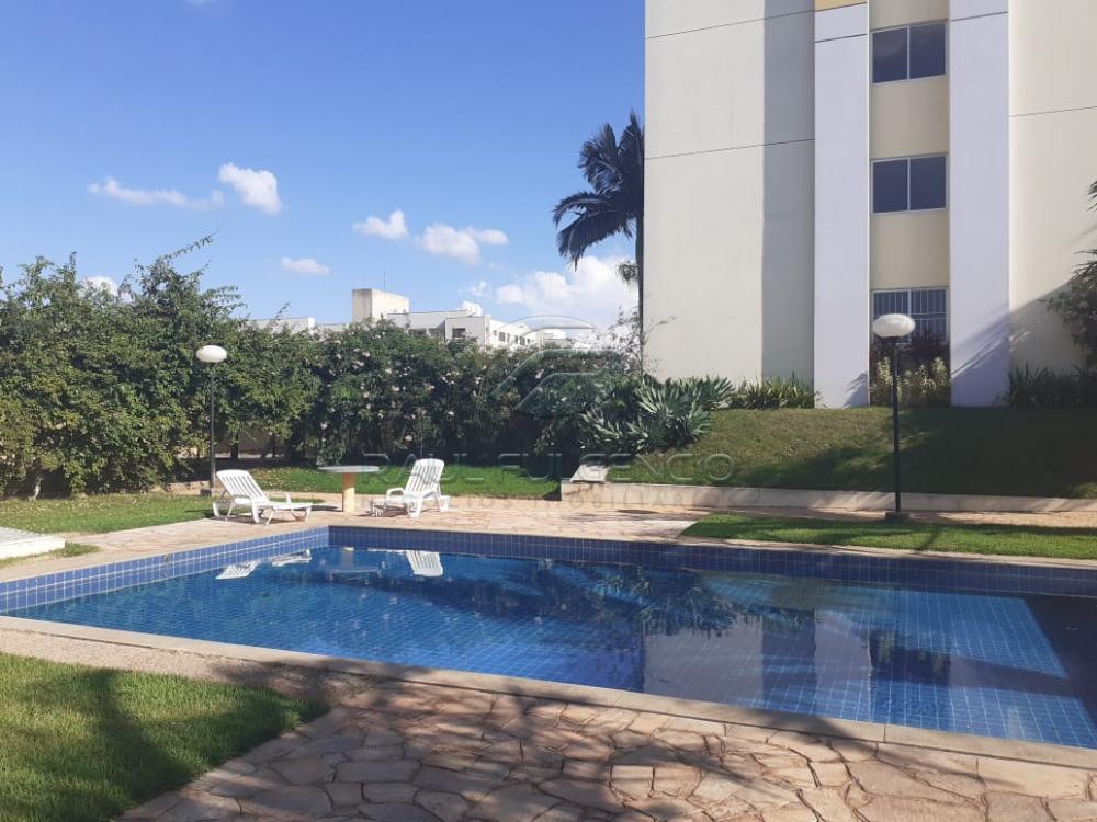 Alugar Apartamento / Flat em Londrina R$ 550,00 - Foto 7