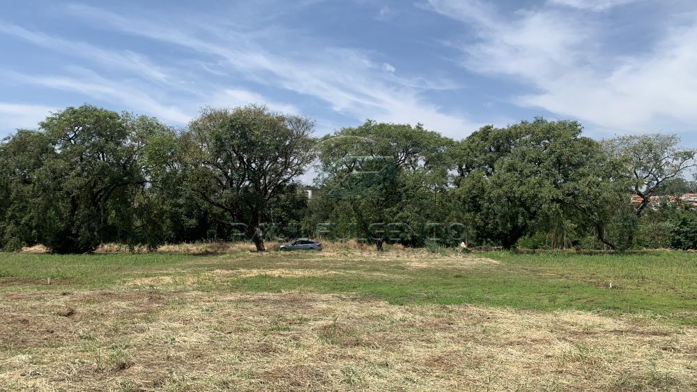 Comprar Terreno / Residencial em Londrina R$ 350.000,00 - Foto 3