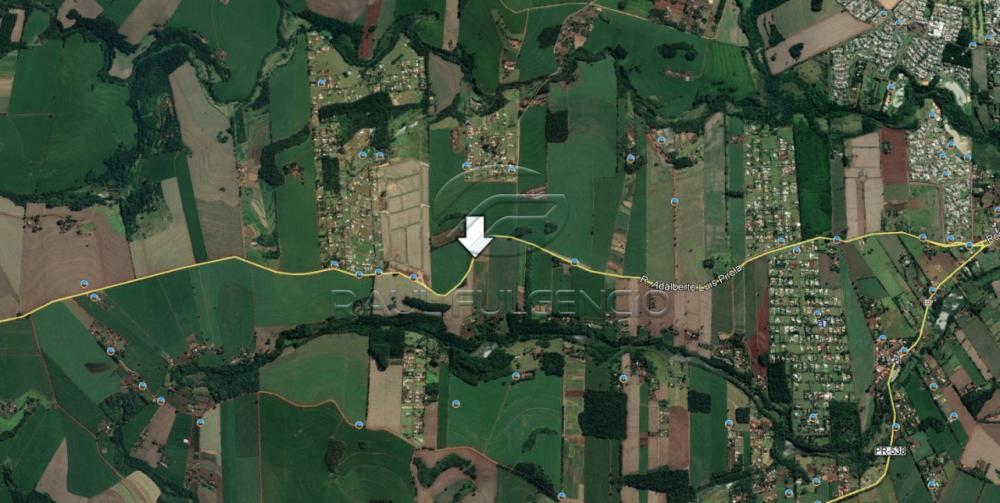 Comprar Terreno / Área em Londrina R$ 11.000.000,00 - Foto 1