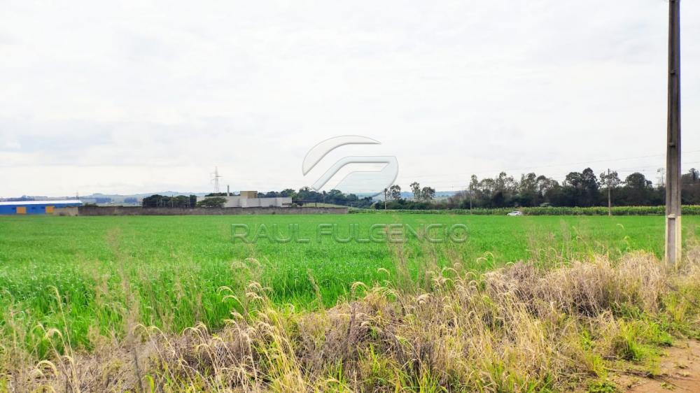 Comprar Terreno / Comercial em Londrina R$ 620.000,00 - Foto 3