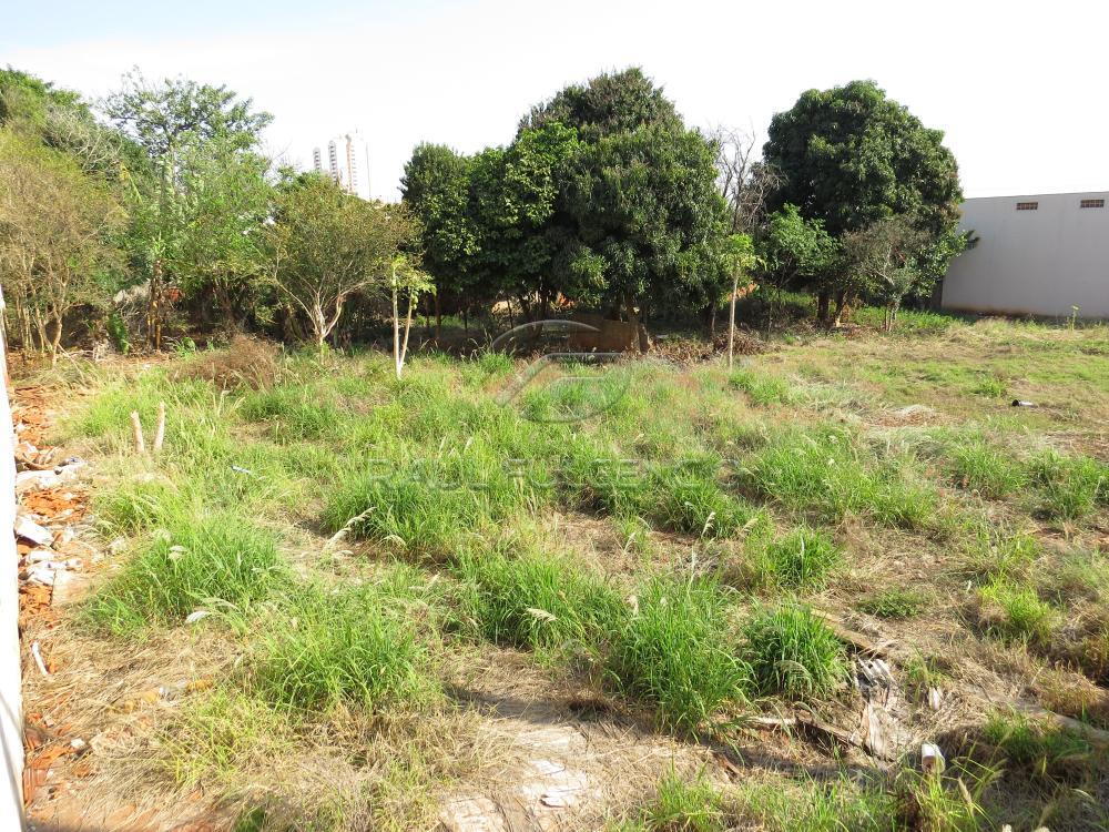 Comprar Terreno / Comercial em Londrina R$ 2.100.000,00 - Foto 3