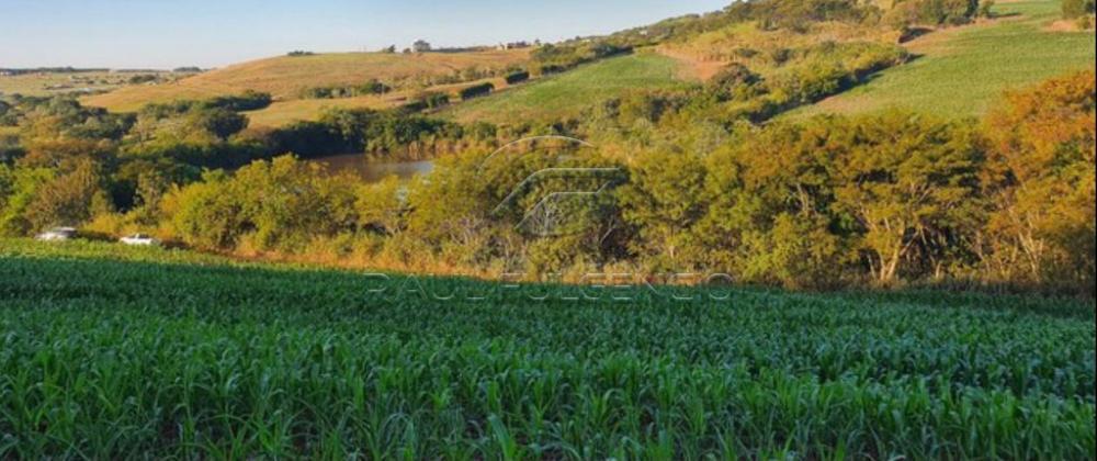 Comprar Terreno / Área em Sertanópolis R$ 3.440.000,00 - Foto 1