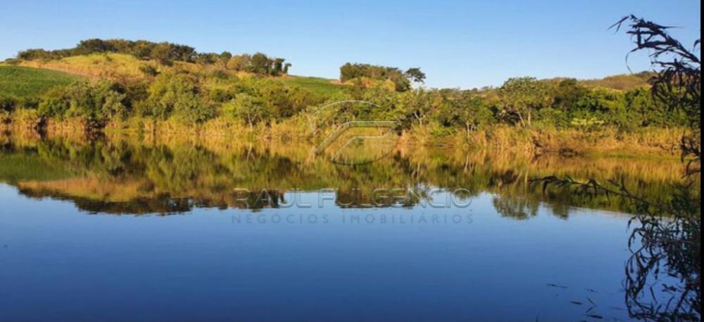 Comprar Terreno / Área em Sertanópolis R$ 3.440.000,00 - Foto 4