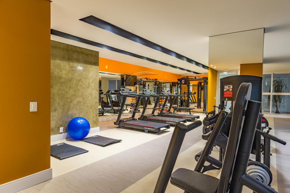 Alugar Apartamento / Padrão em Londrina apenas R$ 1.400,00 - Foto 79