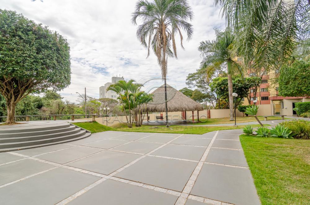 Alugar Apartamento / Padrão em Londrina apenas R$ 1.000,00 - Foto 23