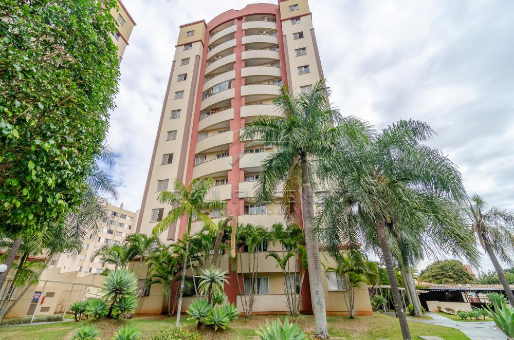 Alugar Apartamento / Padrão em Londrina apenas R$ 1.250,00 - Foto 38