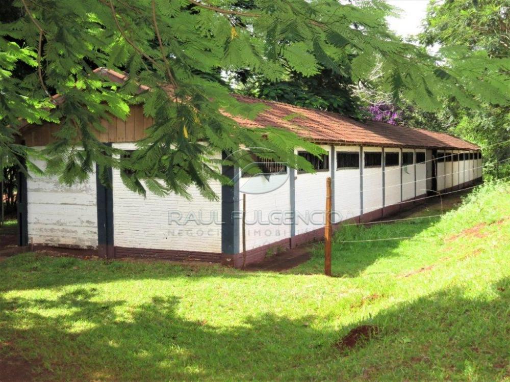 Comprar Casa / Condomínio Sobrado em Cambé apenas R$ 850.000,00 - Foto 31