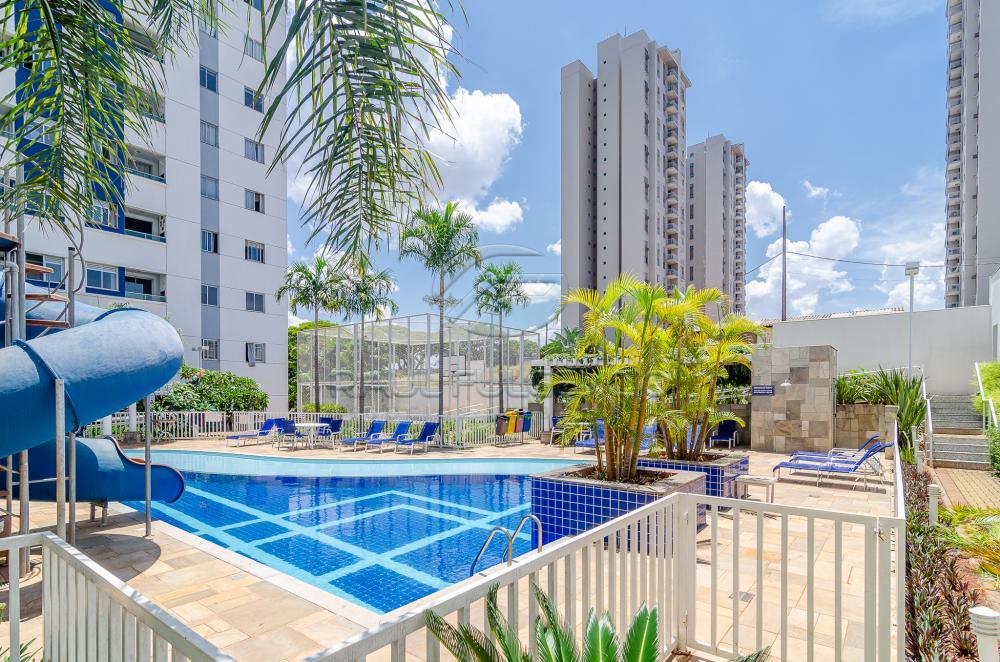 Alugar Apartamento / Padrão em Londrina R$ 1.079,15 - Foto 21