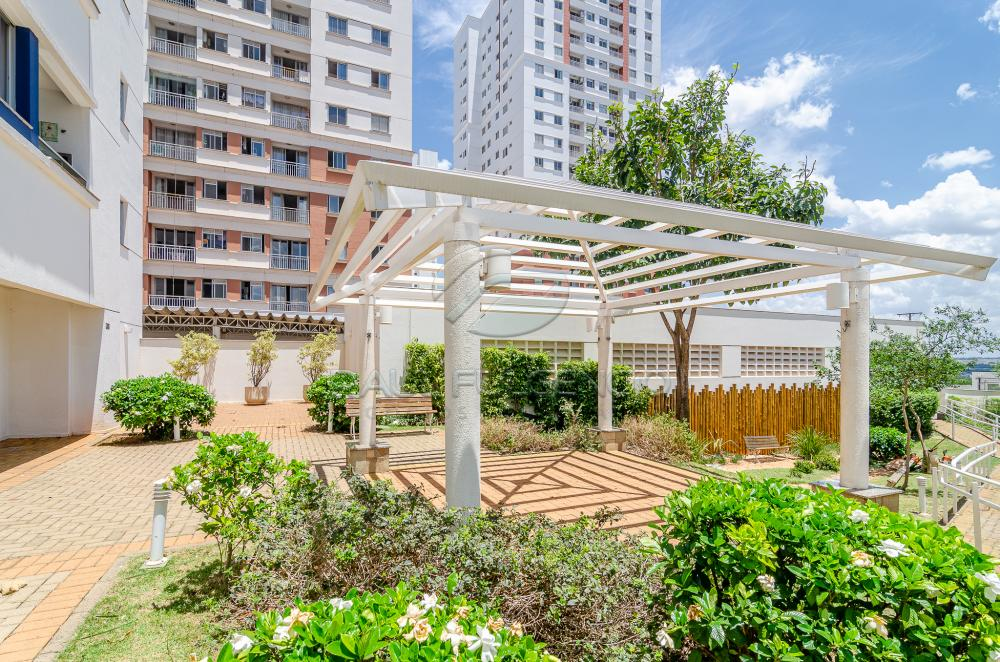 Alugar Apartamento / Padrão em Londrina R$ 1.079,15 - Foto 22