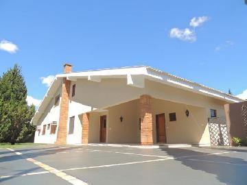 Casa / Condomínio em Londrina Alugar por R$5.500,00