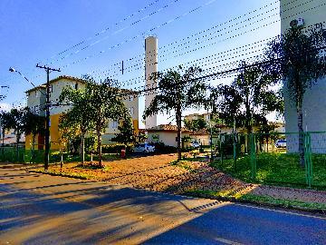 Londrina Hipica Apartamento Locacao R$ 800,00 Condominio R$300,00 2 Dormitorios 1 Vaga Area construida 40.00m2